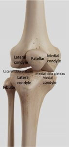 Anterior view of right knee