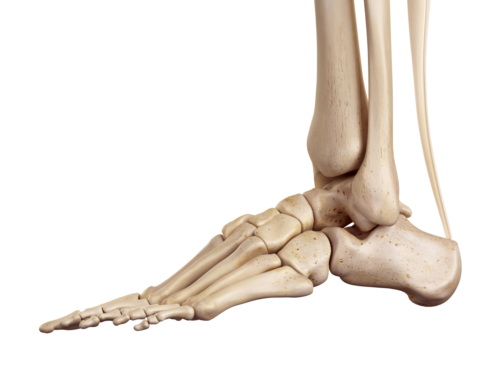 Lateral aspect of left foot